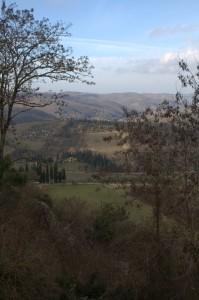 Chianti Valley near Radda